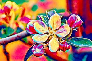 Das Bild zeigt eine bunte Blume welche die 7 Stadien der Alzheimer Demenz repräsentiert